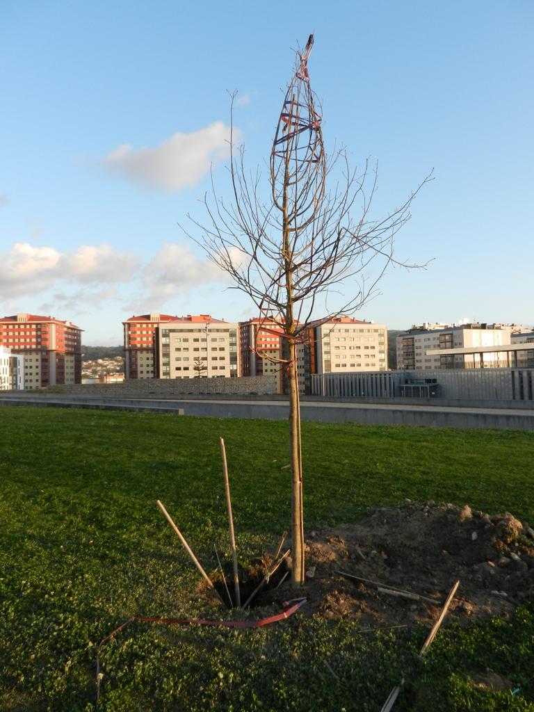 Parque Navia domingo 18/3/2012